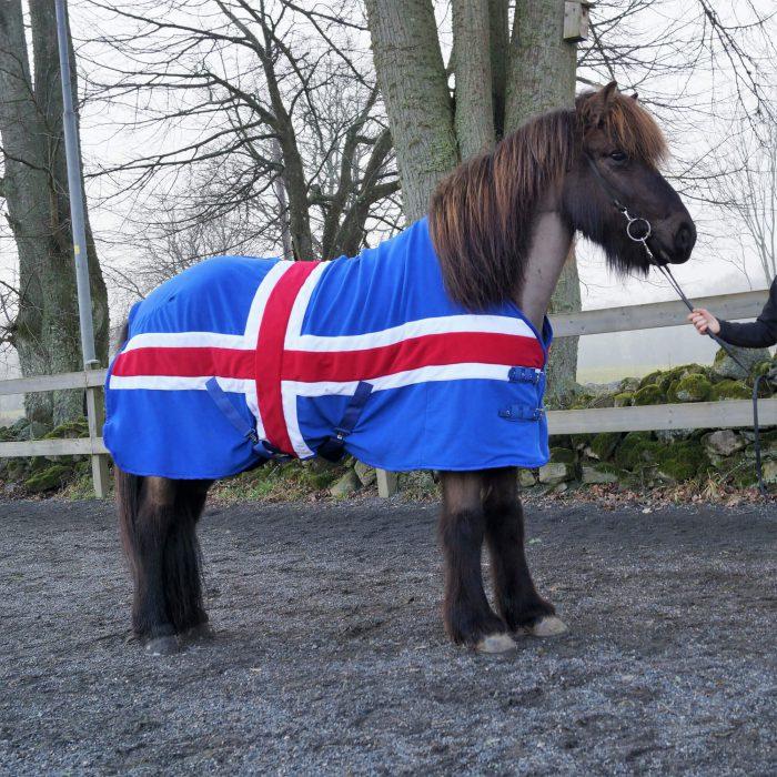HR Fleecetäcke Iceland